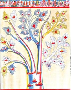 tree of diagnosis.jpg