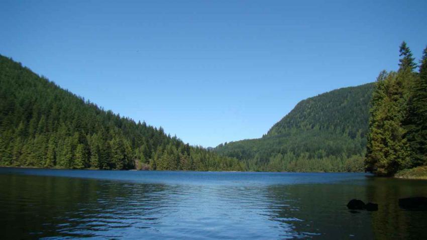 loonlake1.jpg-lake-.jpg