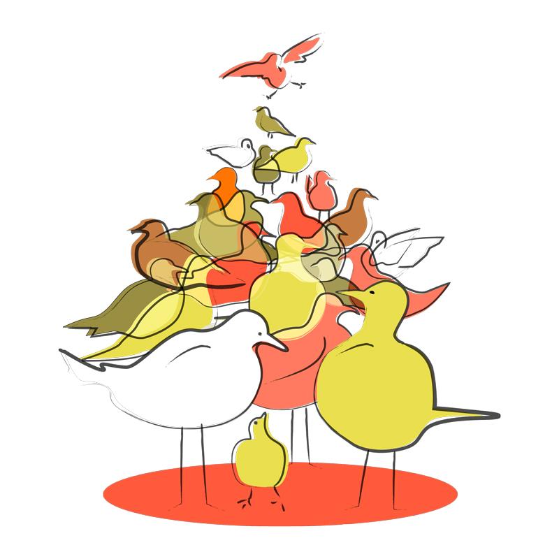 Birds_PaulaKovarik