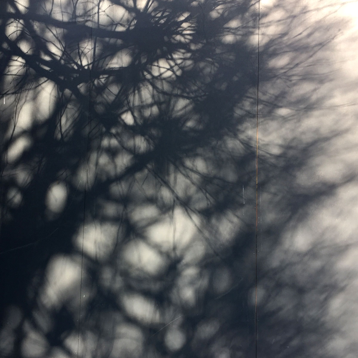 fading shadows.
