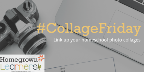 Join Me For The Weekly  Homeschool Meme, Collage Friday