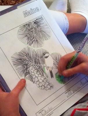 Notebooking Through a Favorite Read Aloud: Calico Bush
