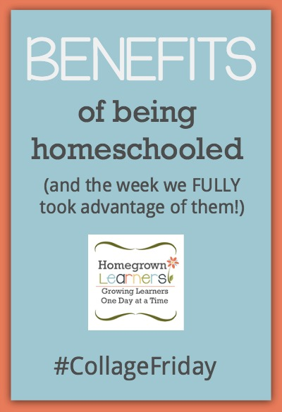 The Benefits of Being Homeschooled (and the week we FULLY took advantage of them)