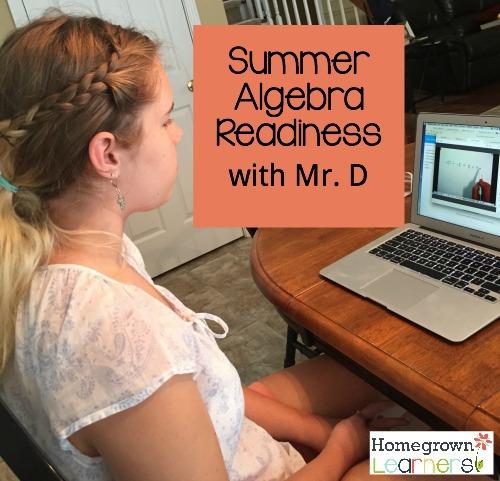 Algebra Readiness with Mr. D
