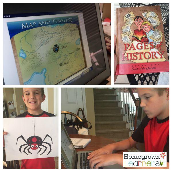 Homeschool Curriculum Choies - 5th Grade