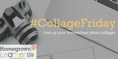 Collage Friday - a weekly link up for homeschool bloggers