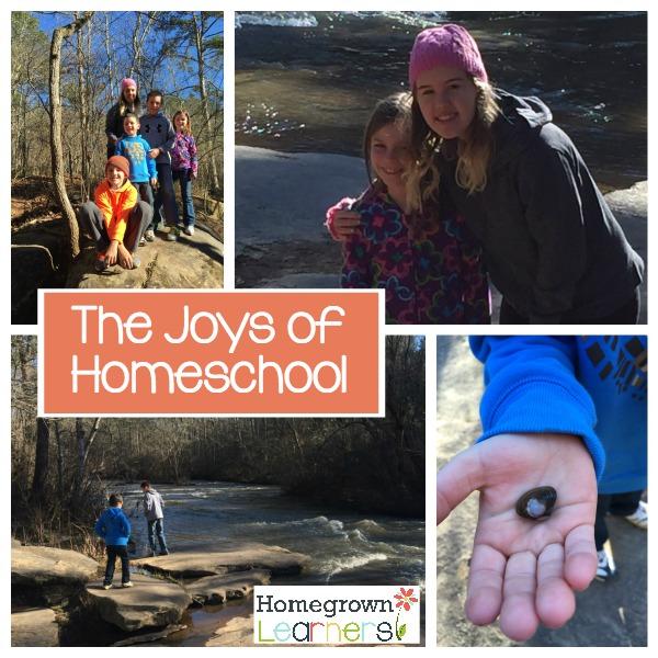 The Joys of Homeschool
