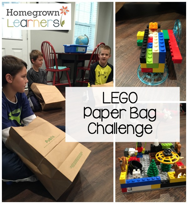 The LEGO Paper Bag Challenge
