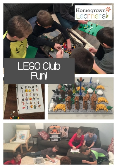 LEGO Club Fun