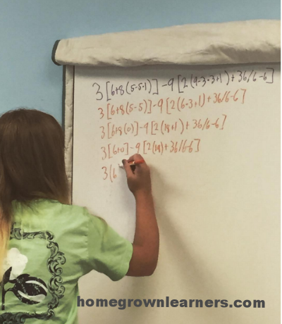 Less is More: Why We Homeschool Classically