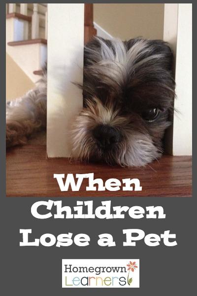 When Children Lose a Pet