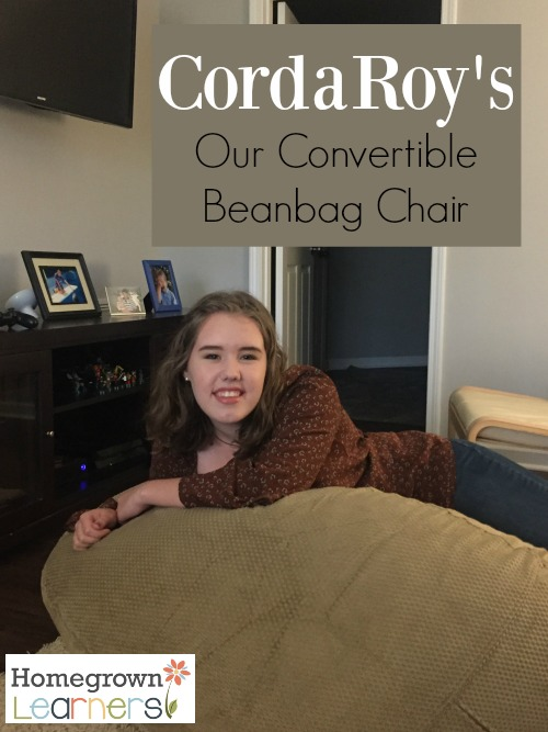Our Favorite Beanbag Chair - it converts into a bed!