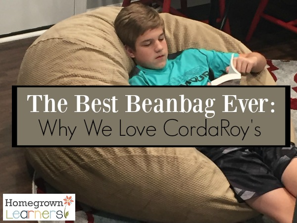 The Best Beanbag ever - it converts into a bed!