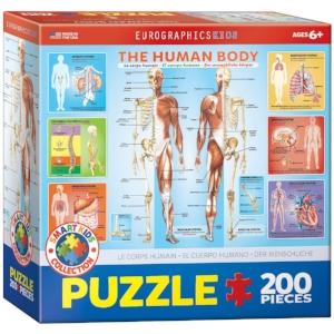 Human Body Jigsaw Puzzle