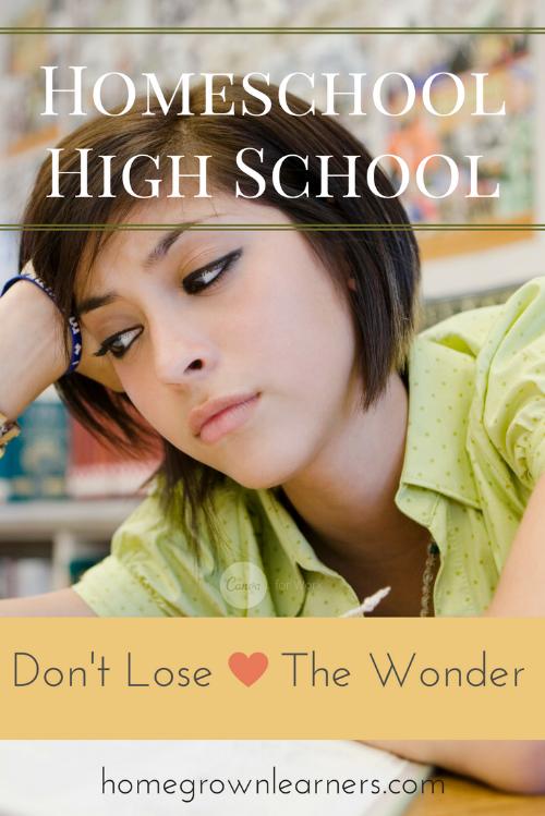 Homeschool High School: Don't Lose the Wonder