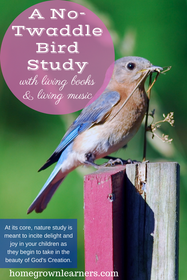 Twaddle Free Bird Study Guide with Living Books and Music