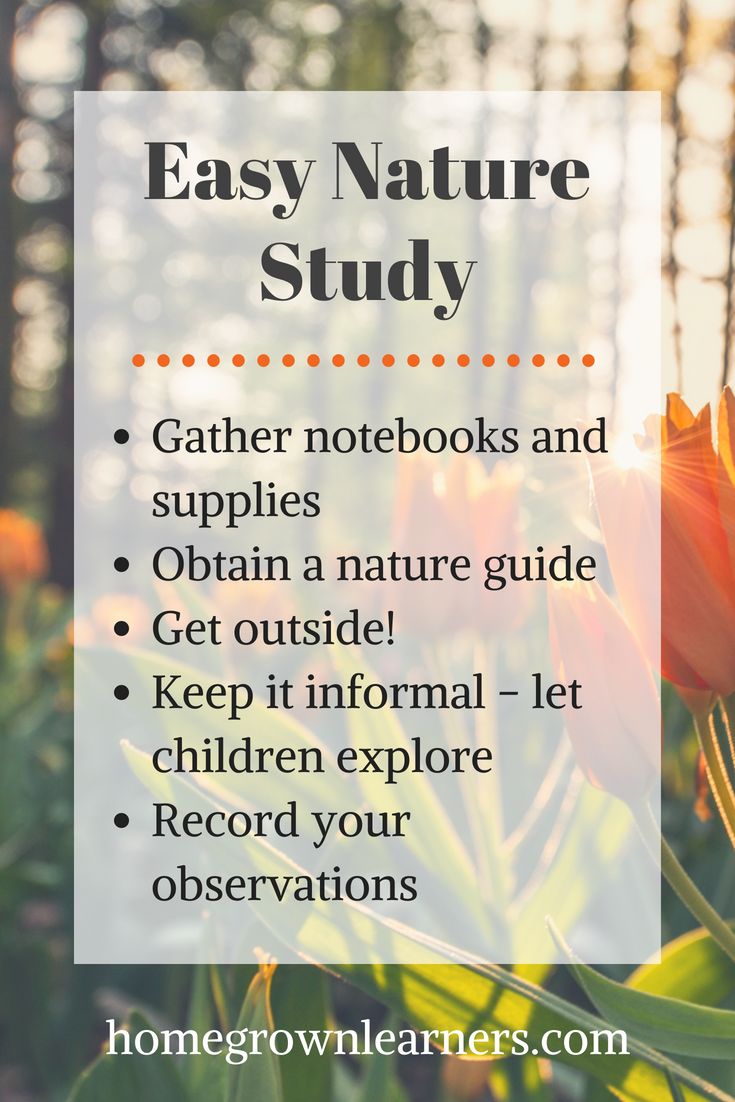 Easy Steps for Nature Study