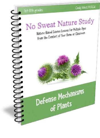 No Sweat Nature Studies
