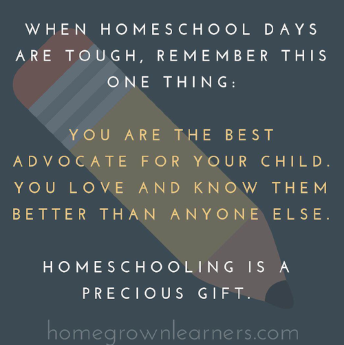 5 Homeschool Truths You Need to Remember