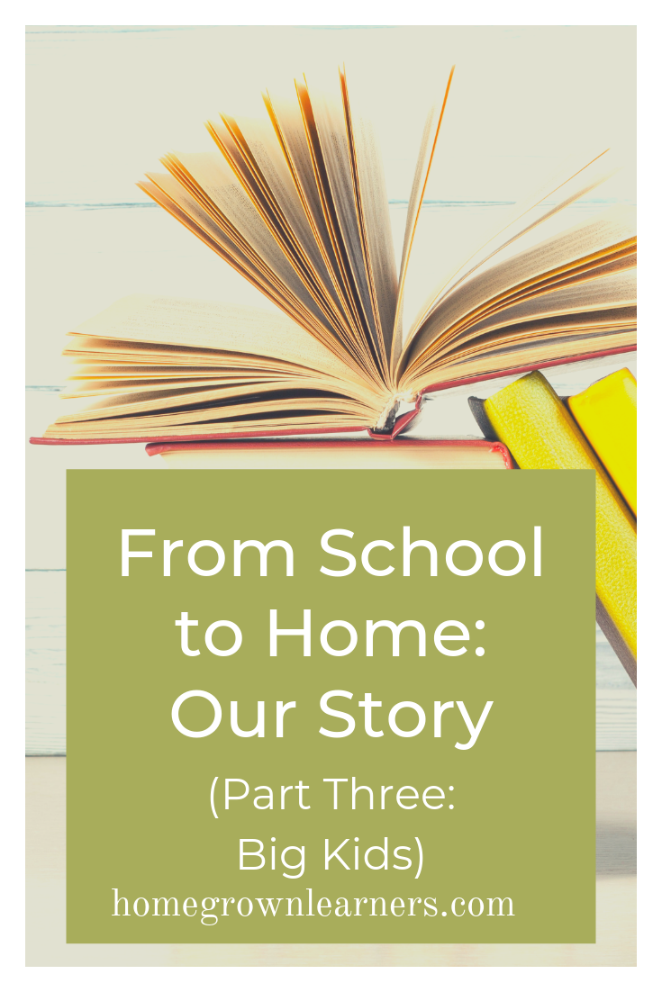 From School to Home: Our Story (Part 3: Big Kids) #homeschool
