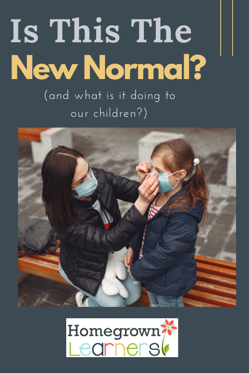 Is This the New Normal? And what is it doing to our children?