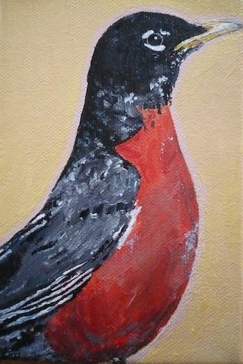 American robin (sold Dec 2012)