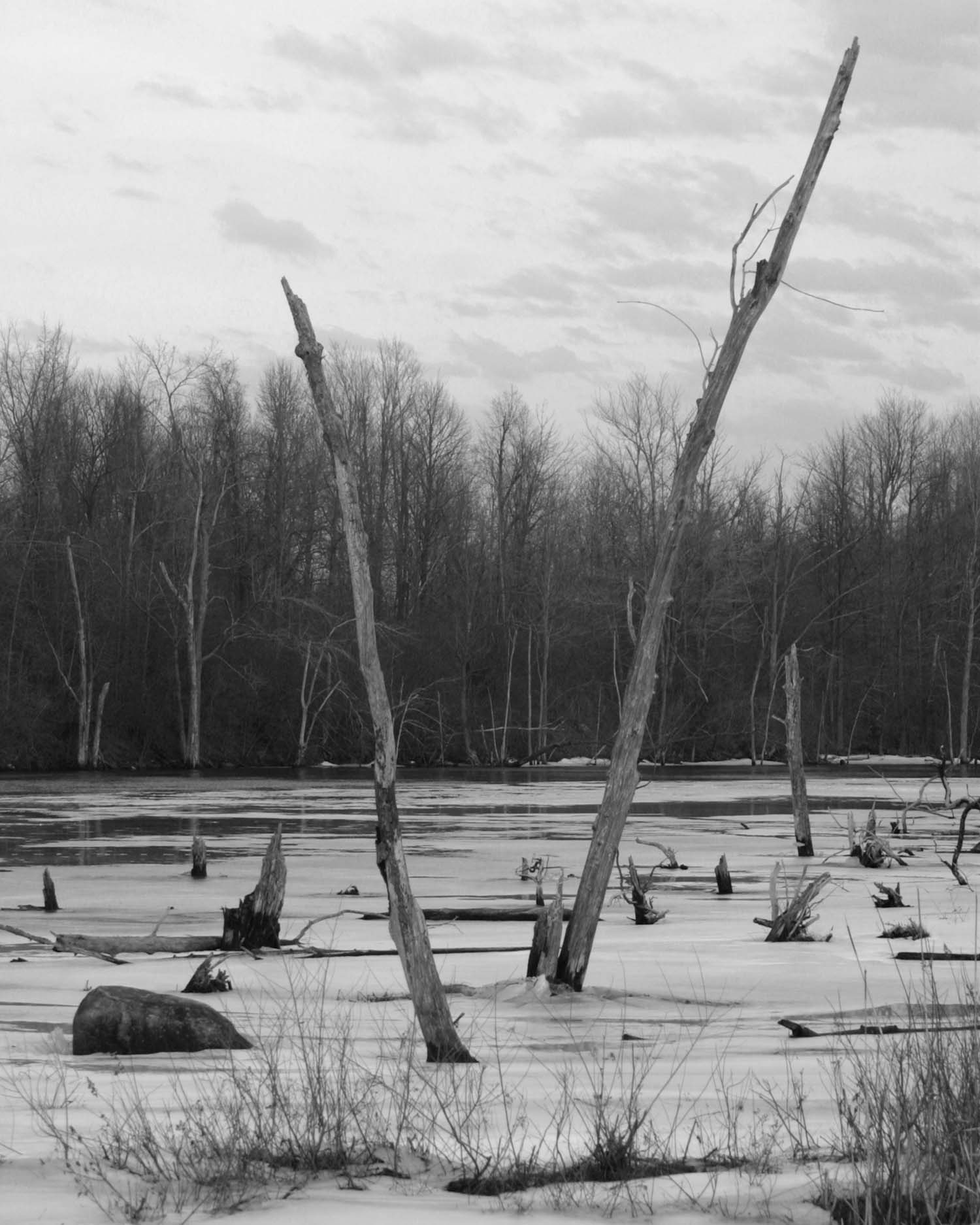 Adirondack Lake #1