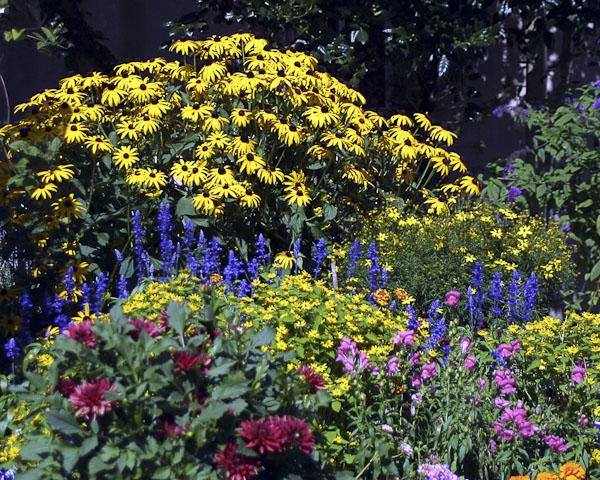 ed 034 res 360 Lincoln Ave Garden 8x10 copy.jpg