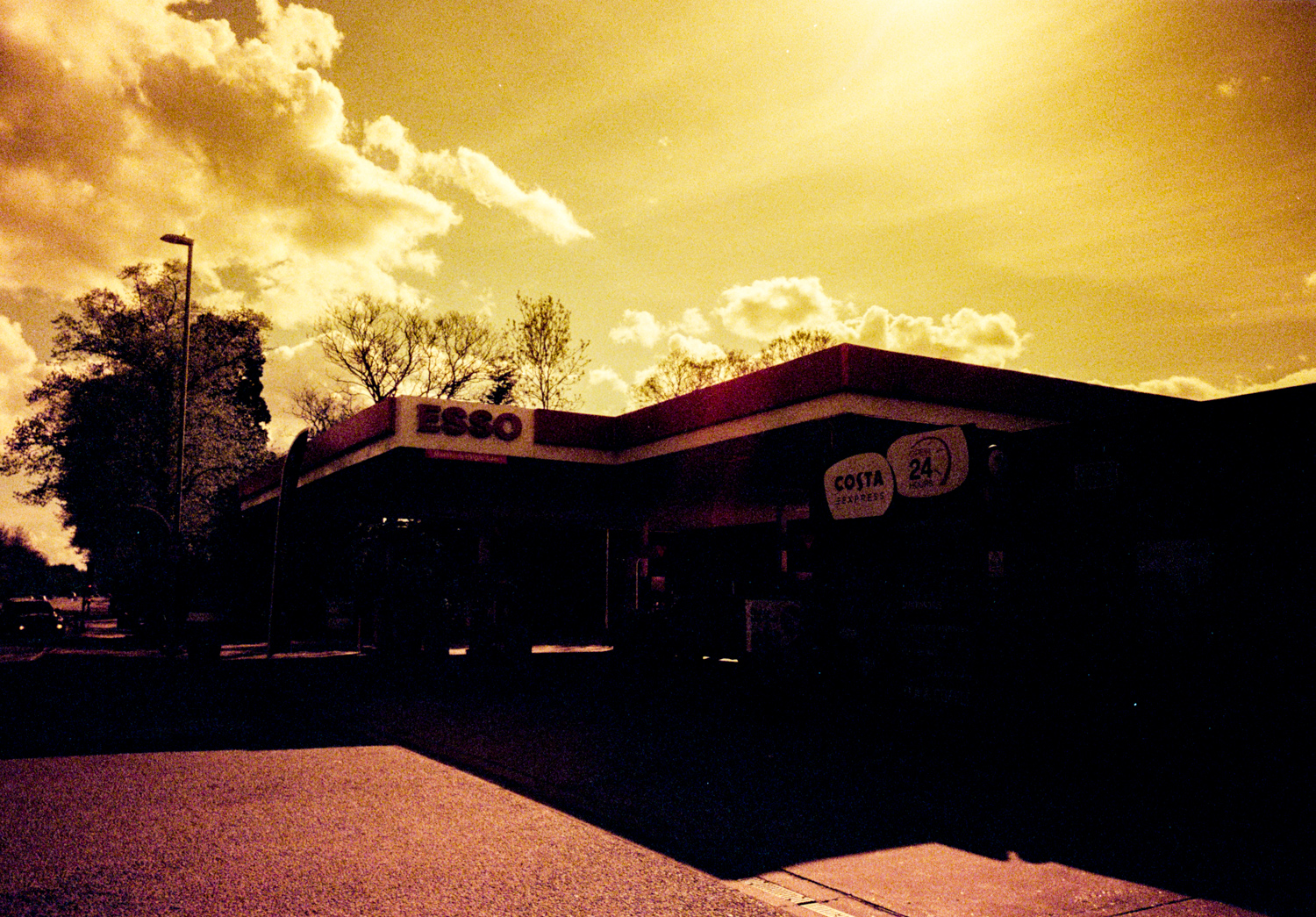 lomography-redscale-examples-8.jpg