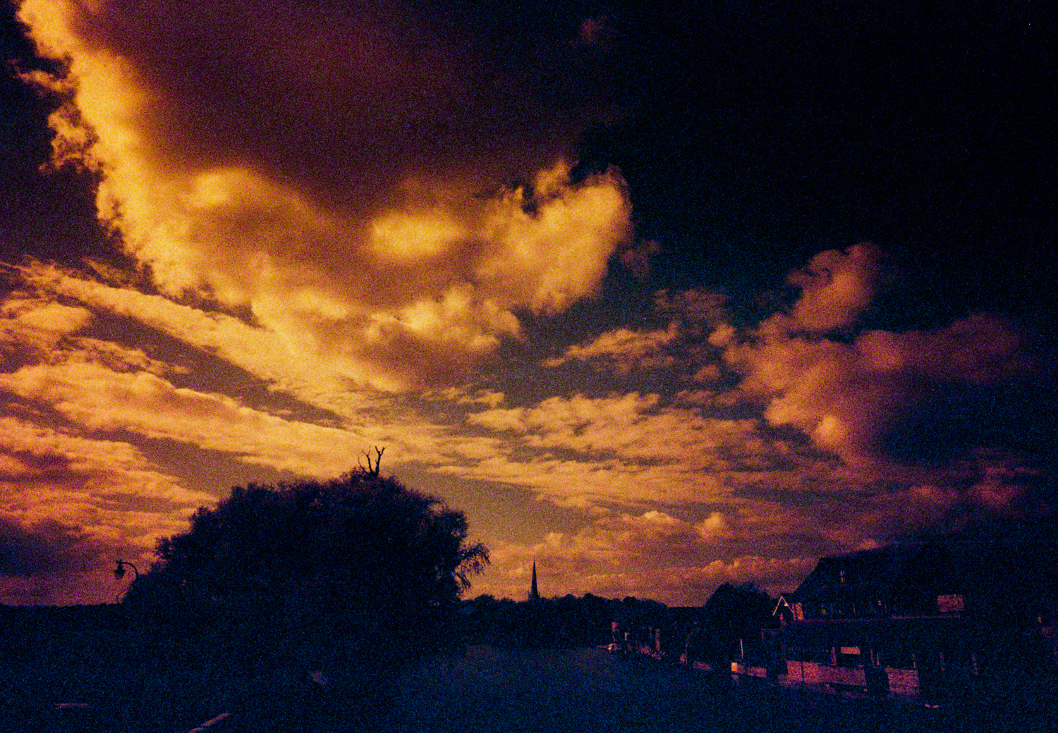 lomography-redscale-examples-11.jpg