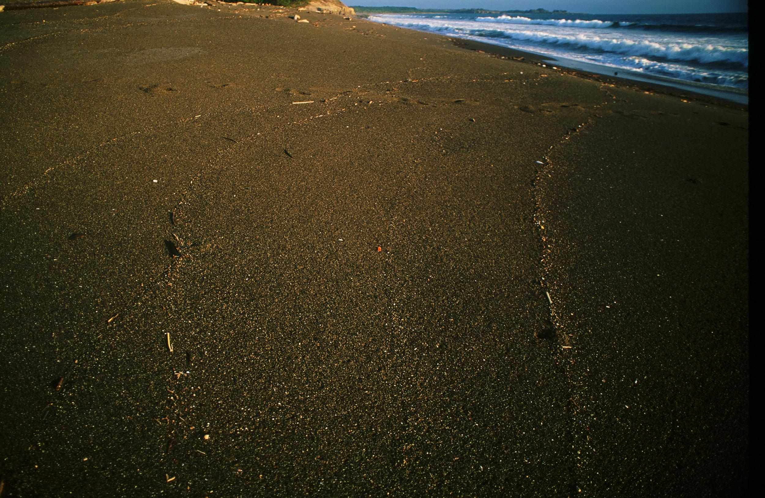CostaRica-3.jpg