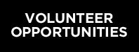 prg-volunteer.jpg
