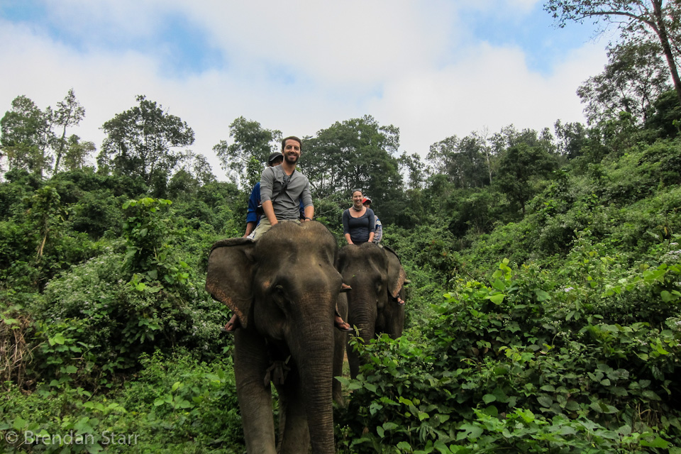 Guests at ECC get to ride elephants, but for no longer than an hour. After being taught the different ways to get onto the elephant, you ride the traditional way - bareback.