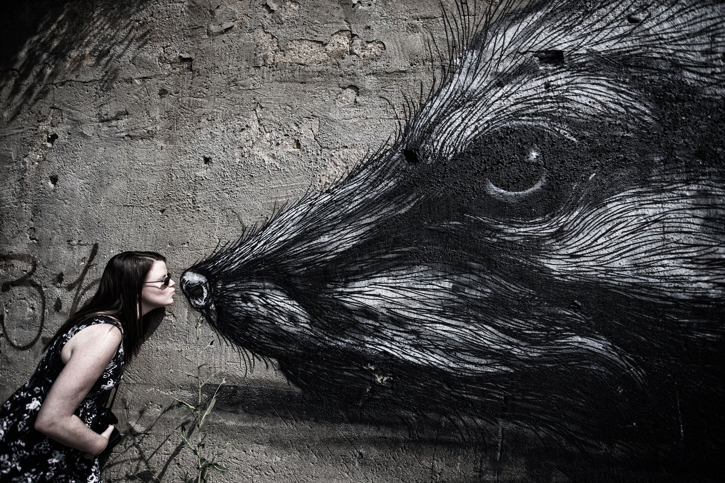 Pilsen Mural Project
