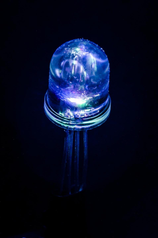 Tecno-medusa. Immagine di Alessandro Besana di AM Instruments. (abesana[at]aminstruments.com)