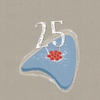 25 anni candele-no swirl.jpg