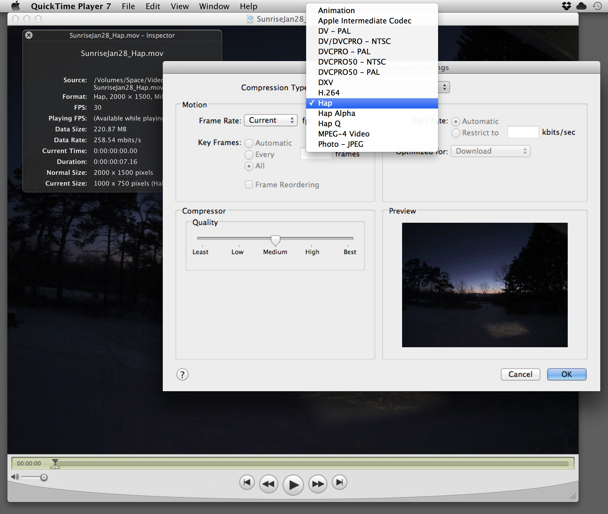 Hap, Hap Alpha and Hap Q show up as codec options in the standard Mac Quicktime export panel.