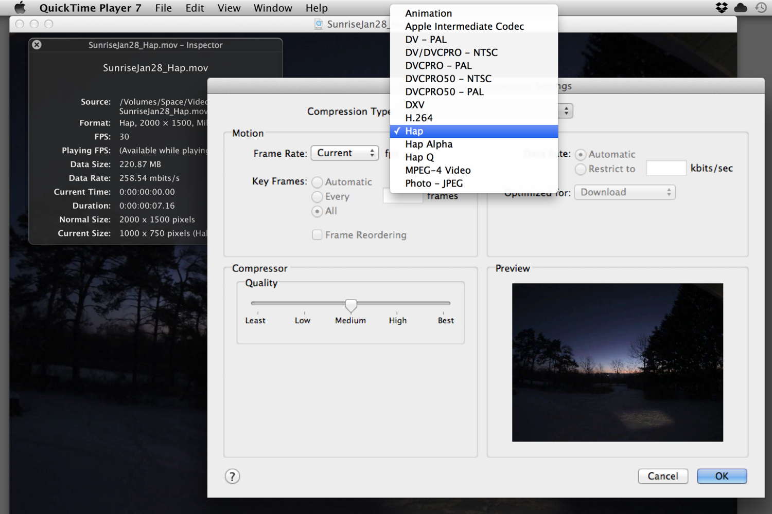 Movies can be converted to Hap, Hap Alpha, and Hap Q from the standard QuickTime Export Panel.