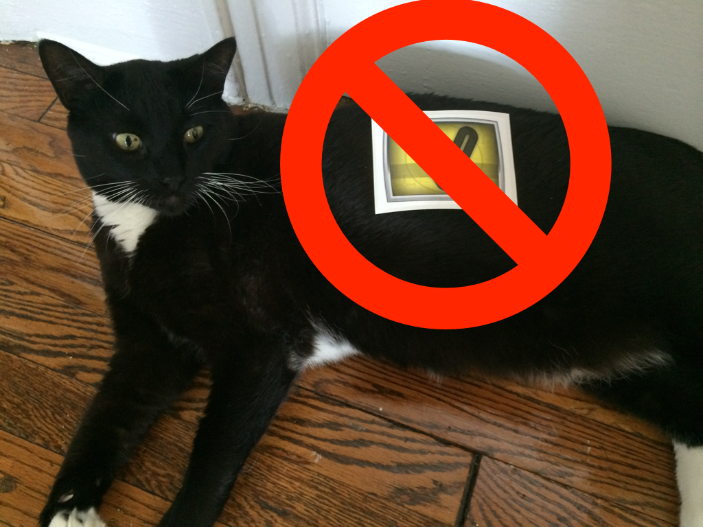 DO NOT PLACE STICKERS ON PETS