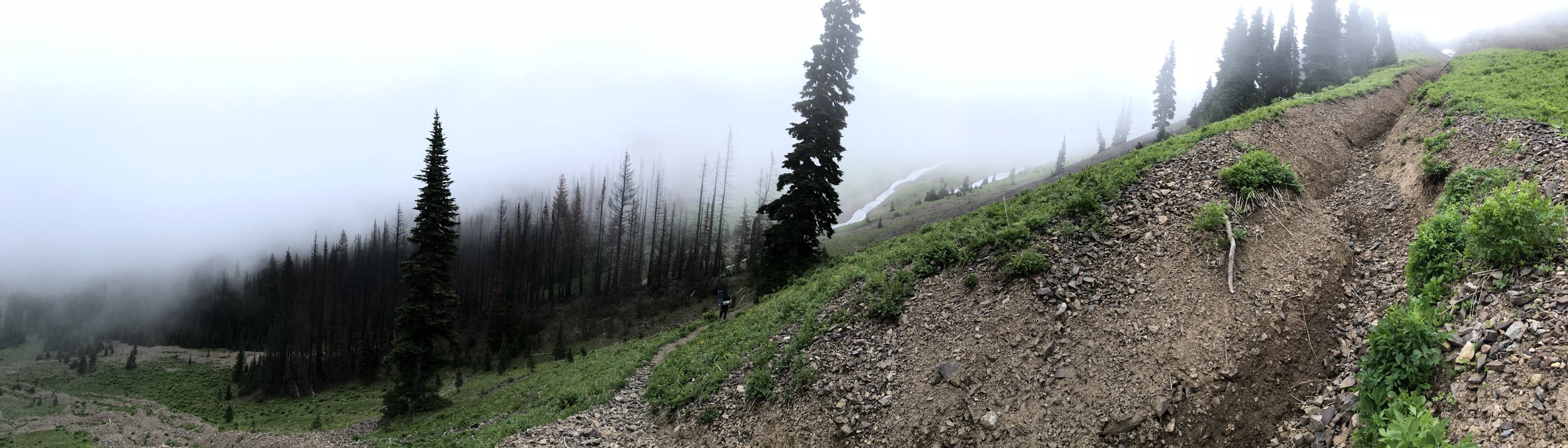 Trip Report - Two Nights in the Central Cascades: Norse Peak Trail to Basin Lake