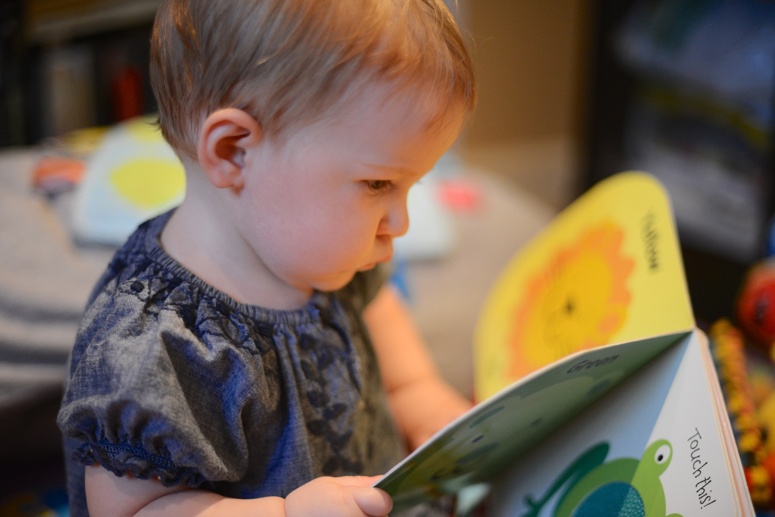Lila has been really loving her touch and feel books as of late.