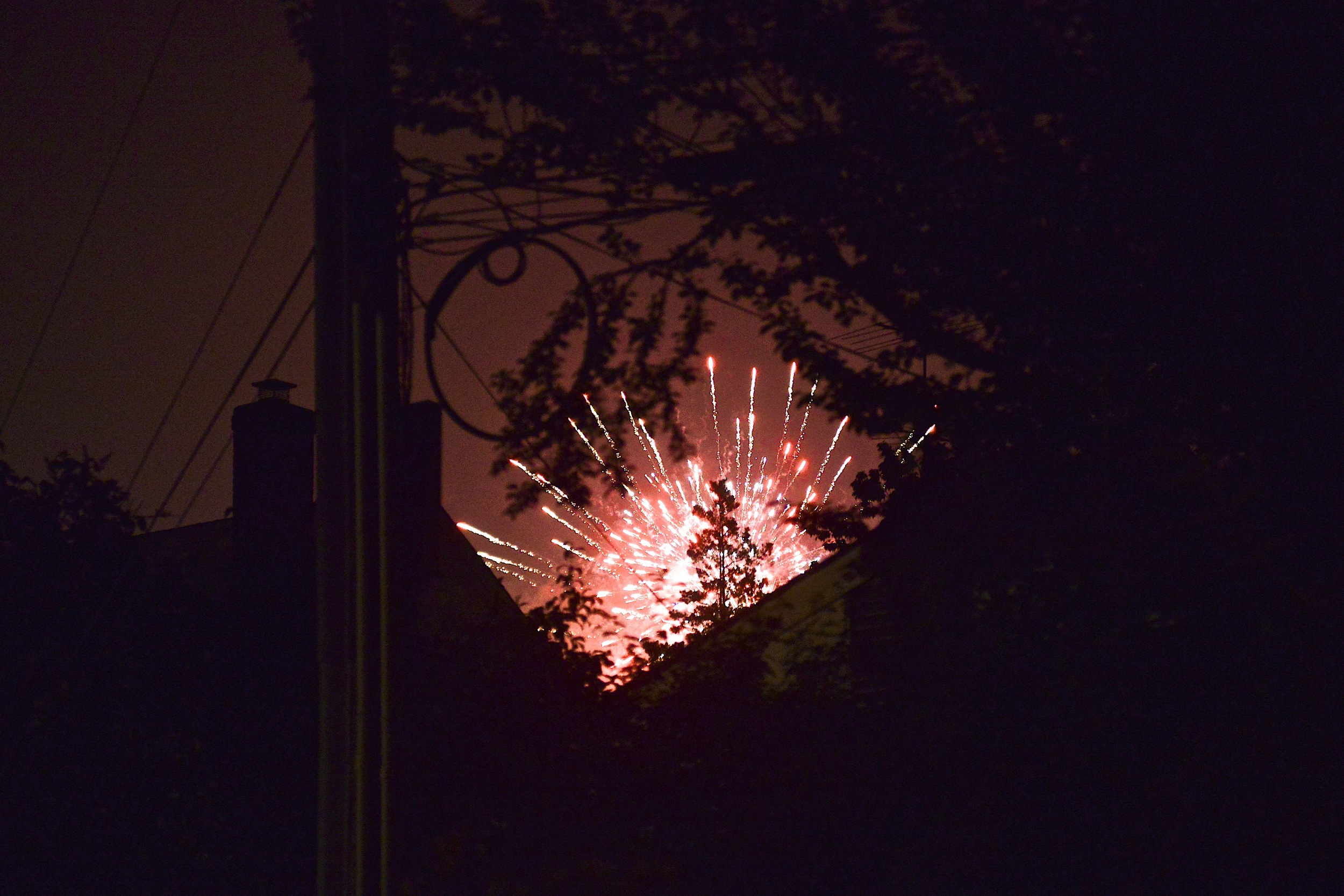 Watching fireworks in our backyard