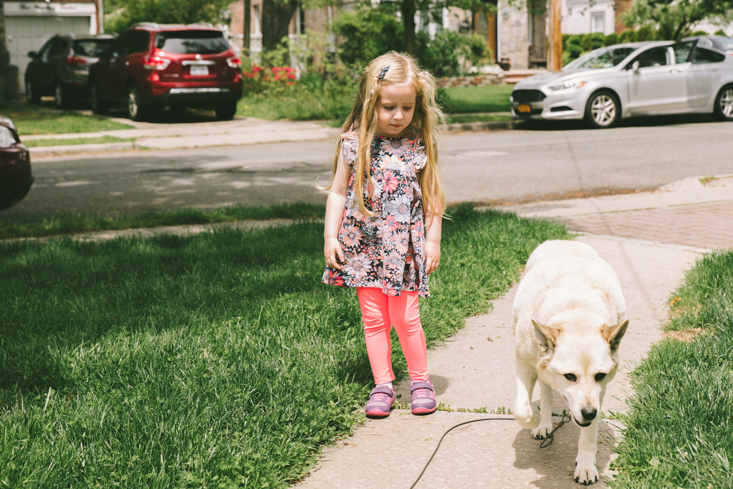 girl-with-dog-francesca-russell-photography-and-films-long-island-family-photographer.jpg