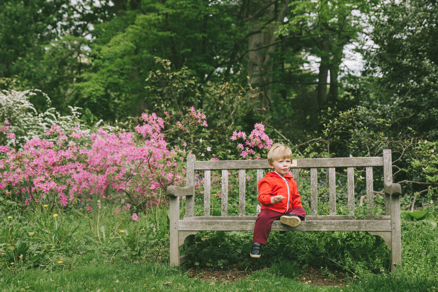 boy-on-bench-francesca-russell-photography-and-films-long-island-family-photographer.jpg