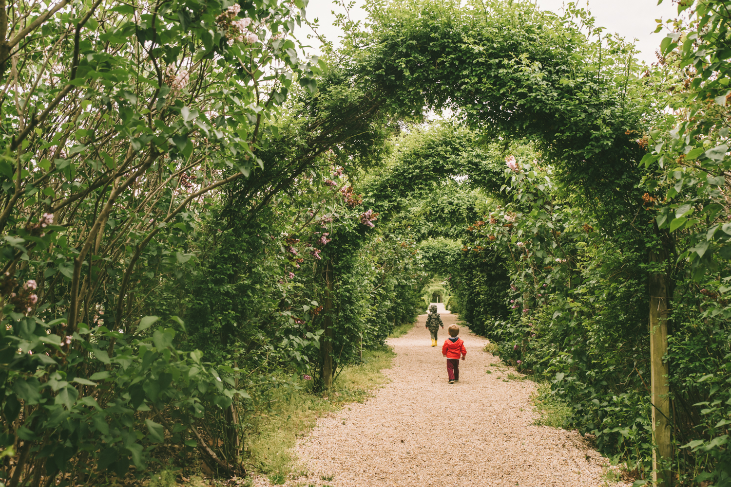 walking-through-the-gardens-francesca-russell-photography-and-films-long-island-family-photographer.jpg