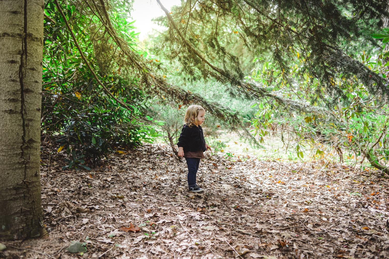 Planting Fields Arboretum | Francesca Russell, Long Island Photographer