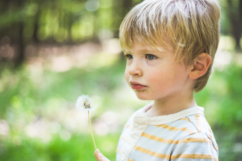 Logan and a dandelion