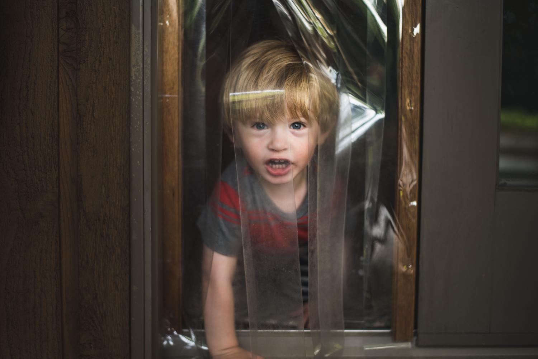 Logan going through the dog door to the porch.