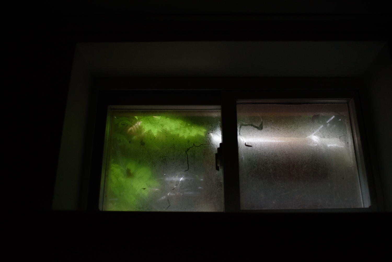 Francesca Russell Photography | Long Island Family Documentary Photography | Steamy basement window