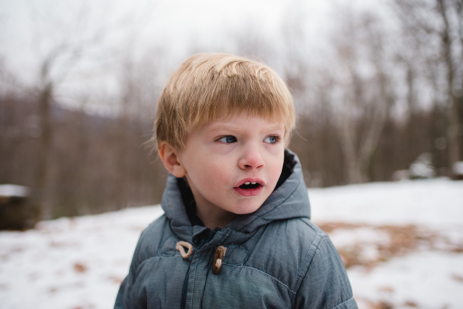 Portrait of a toddler boy in the snow.